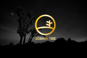 JoshuaTree069-2 copia
